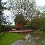 Warwickshire Pond