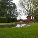 Warwickshire Pond 3