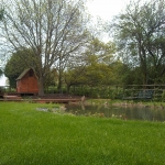 Warwickshire Pond 2
